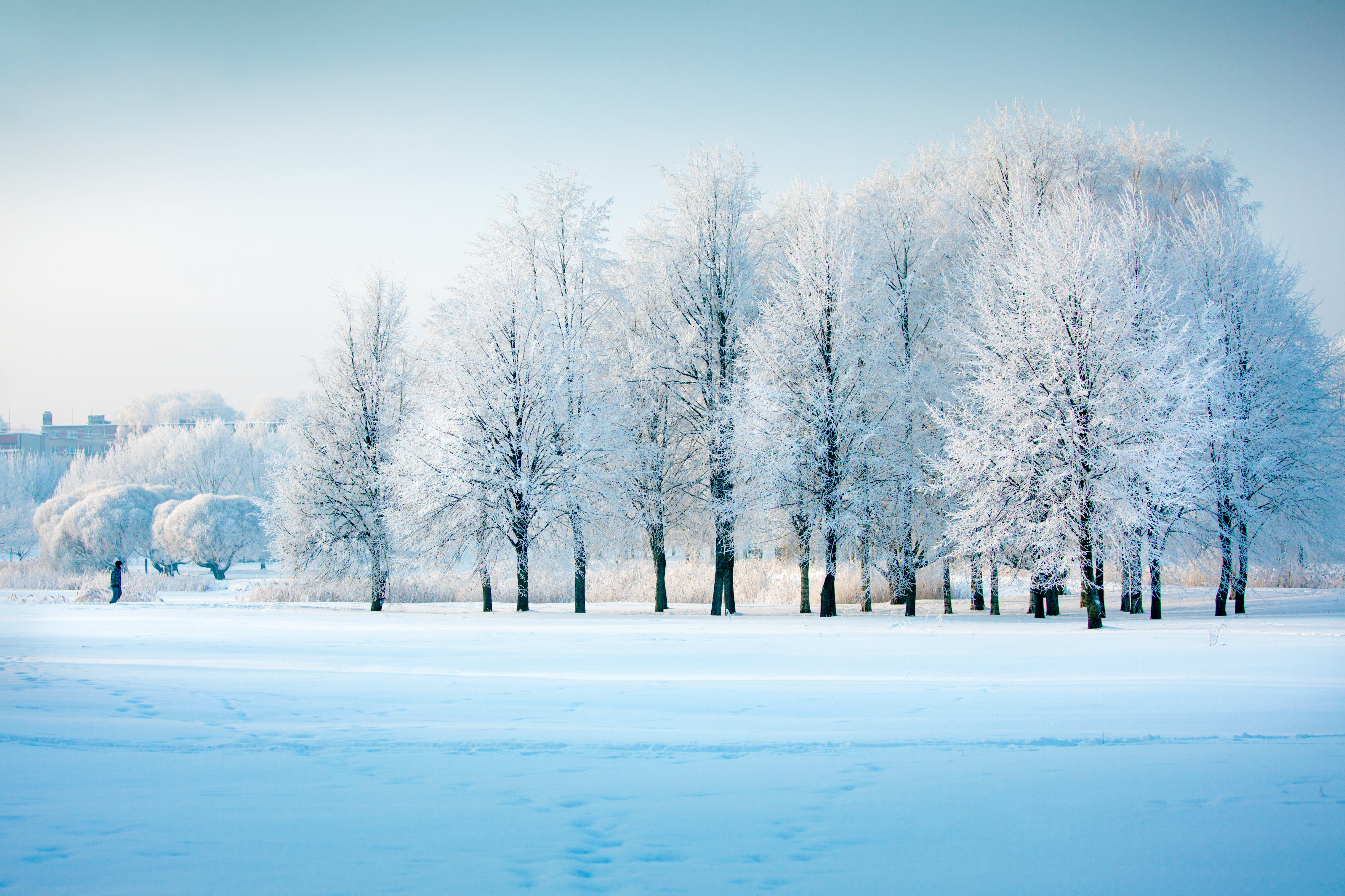 Winter S Coming How To Make The Most Of The Season From